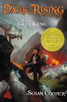 Grey King By Cooper, Susan/ Heslop, Michael (ILT)/ Heslop, Michael